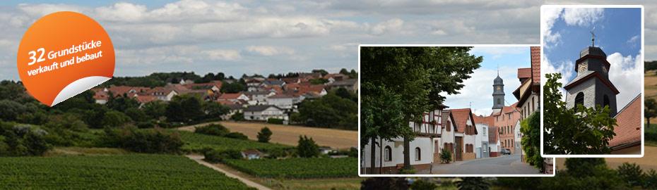 Grafik Baugebiet Dolgesheim